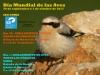 Foto 1 - El día mundial de las aves, también en Soria