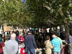 Foto 2 - Celebrado el XXIII mercado ecológico en la capital