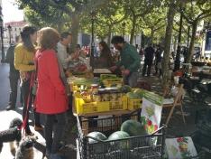 Foto 4 - Celebrado el XXIII mercado ecológico en la capital