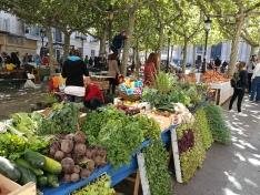 Foto 6 - Celebrado el XXIII mercado ecológico en la capital