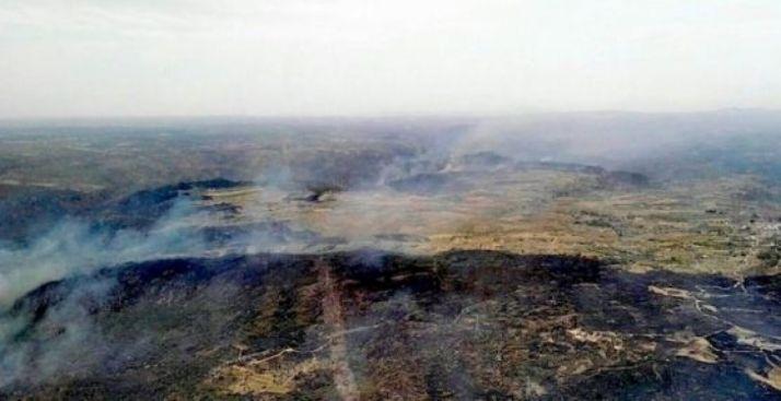 Una de las zonas afectadas por el fuego anterior.