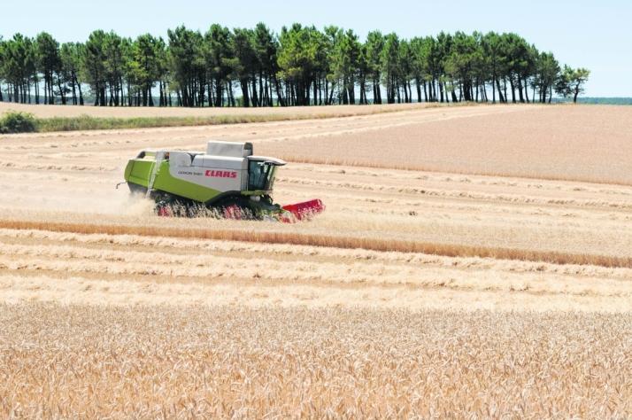 Foto 1 - La Diputación concede ayudas a nueve jóvenes agricultores