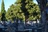 Foto 1 - Casi 7.000 sepulturas sin actualizar en el cementerio de Soria