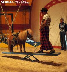 Una de las escenas del circo./SN