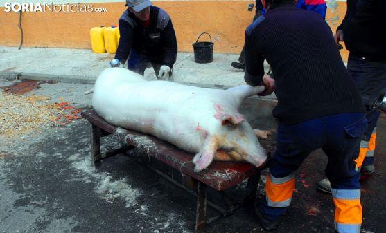 Matanza del cerdo en Arcos en una imagen de archivo./SN