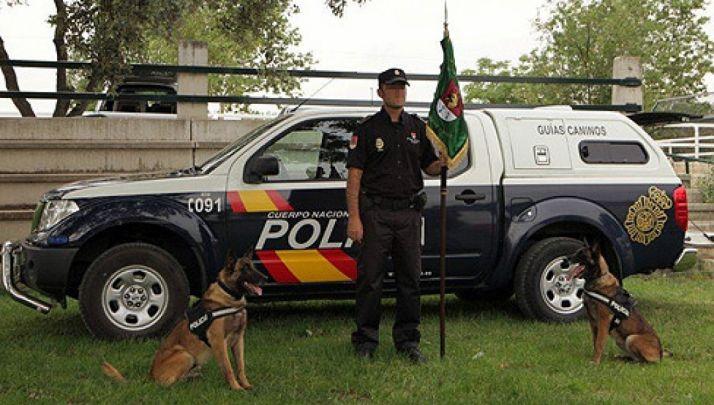 Un agente con dos de los perros de la unidad./CNP