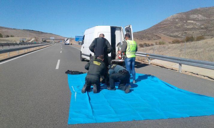 Cortada la A-15 a la altura de Medinaceli por una falsa amenaza de bomba en un autobús