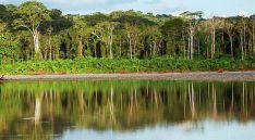 Imagen del Parque Nacional del Manu, en aquel país.