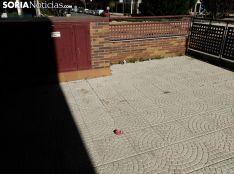 Foto 4 - Vecinos del Pico Frentes, molestos por la conducta de algunos de los alumnos