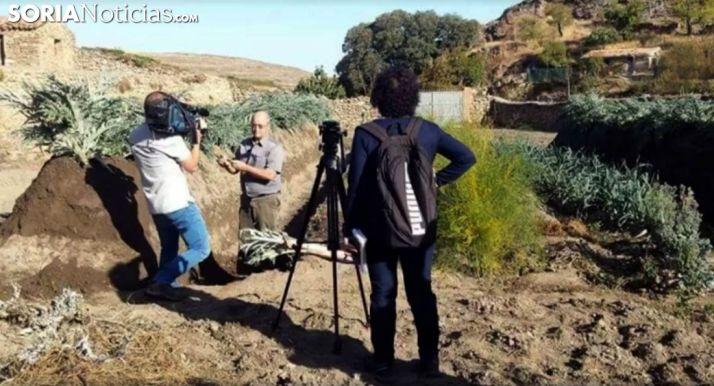 Un equipo de TVE toma imágenes del cultivo en una imagen de archivo.