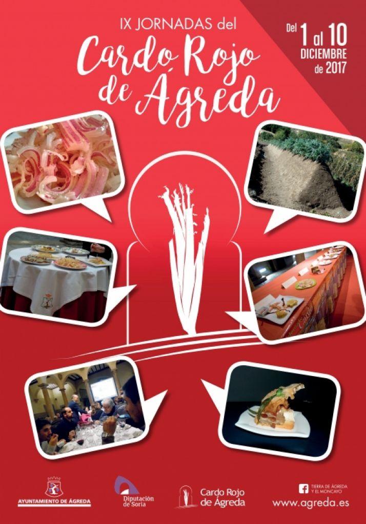 Foto 2 - Ágreda se prepara para sus IX Jornadas del Cardo Rojo