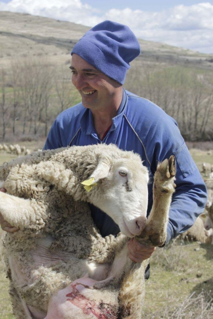 'Pastoreando con Benito', tercer premio.