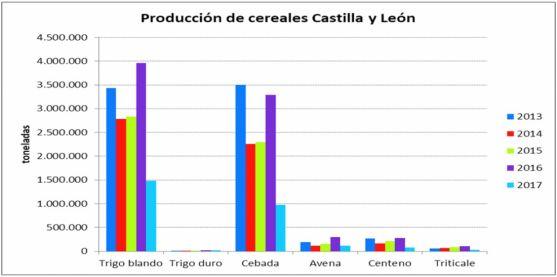 Producción de cereales este 2017.
