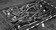 Una fosa con restos de represaliados hallada en Barcones. /ARDS
