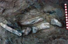 Foto 3 - Buscando dinosaurios en Soria