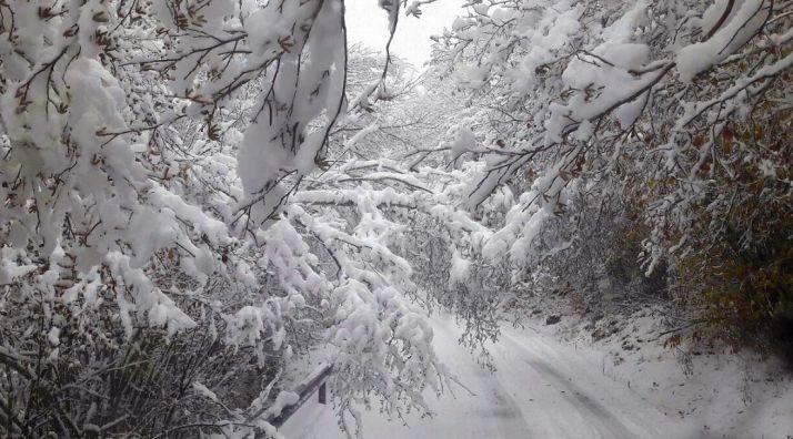 Foto 1 - Protección civil confirma el aviso por nevadas