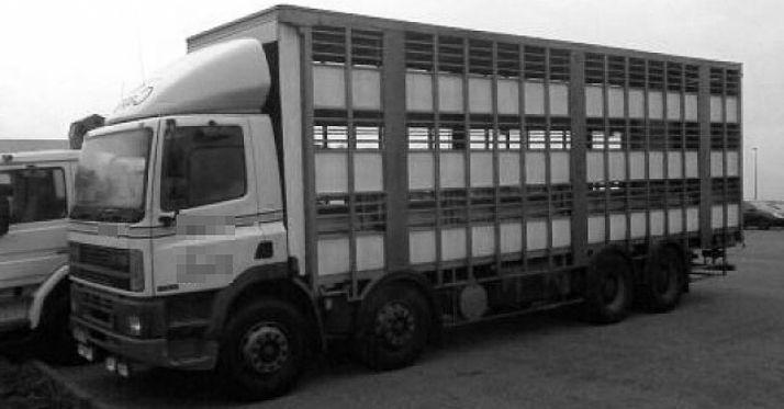 Un vehículo de transporte de ganado.