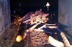 Los troncos esparcidos por la calzada y en el interior el puente./Subdelegación