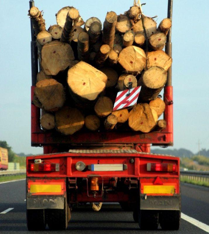 Foto 1 - LOSAN aboga por aumentar la carga de madera en camión