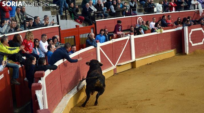 Foto 1 - Cs pide solvencia económica al próximo adjudicatario de la plaza de toros