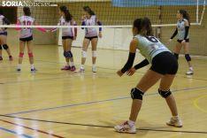 Voleibol en Los Pajaritos. Soria Noticias.