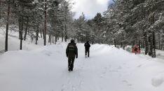 Pista forestal de acceso al aparcamiento del Paso de la Serrá.