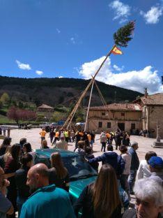 Foto 4 - Las pingadas de los Mayos se reviven en Molinos, Navaleno y San Leonardo