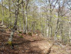 Nueva ruta por el Moncayo, desde Ágreda.