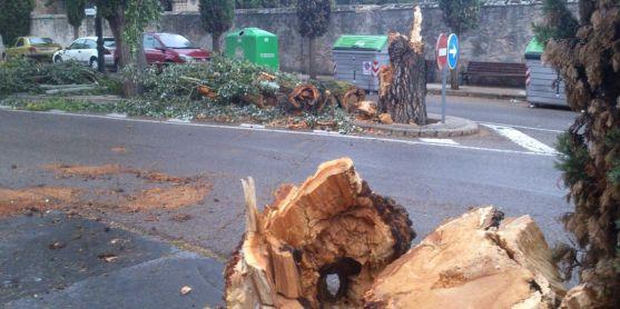 Imagen de archivo de un árbol trocedado tras ser derribado por el viento cerca el cementerio de Soria.