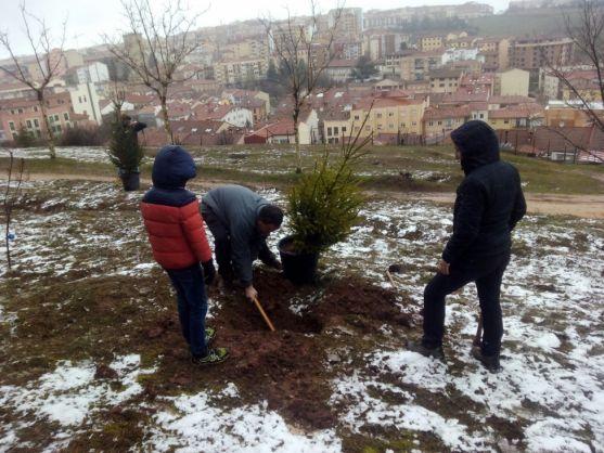 La plantación de árboles en el parque de El Castillo de Soria, la última actividad.