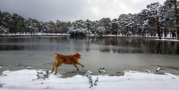 Paisaje de Duruelo en una de las nevadas de este marzo. /AS