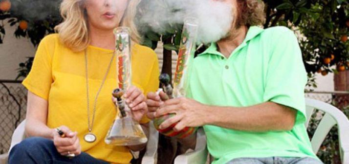 Foto 1 - ¿Cómo es y qué piensa el usuario medio de cannabis?