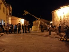Pingada del Mayo chopo en Quintanilla de Tres Barrios.