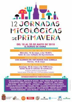 XII Jornadas Micológicas de Primavera en El Burgo de Osma (cartel).