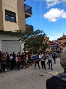 Foto 6 - Galería: la Pingada del Mayo en San Leonardo