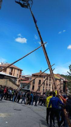 Foto 3 - Galería: la Pingada del Mayo en San Leonardo