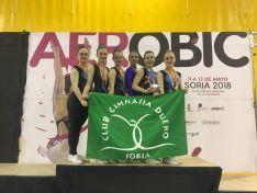 Un grupo de gimnastas sorianas durante el campeonato. /CGD