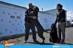 Foto 5 - Como en tu casa: Vocación por los animales en Soria