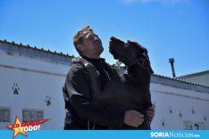 Foto 6 - Como en tu casa: Vocación por los animales en Soria