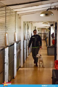 Foto 4 - Como en tu casa: Vocación por los animales en Soria