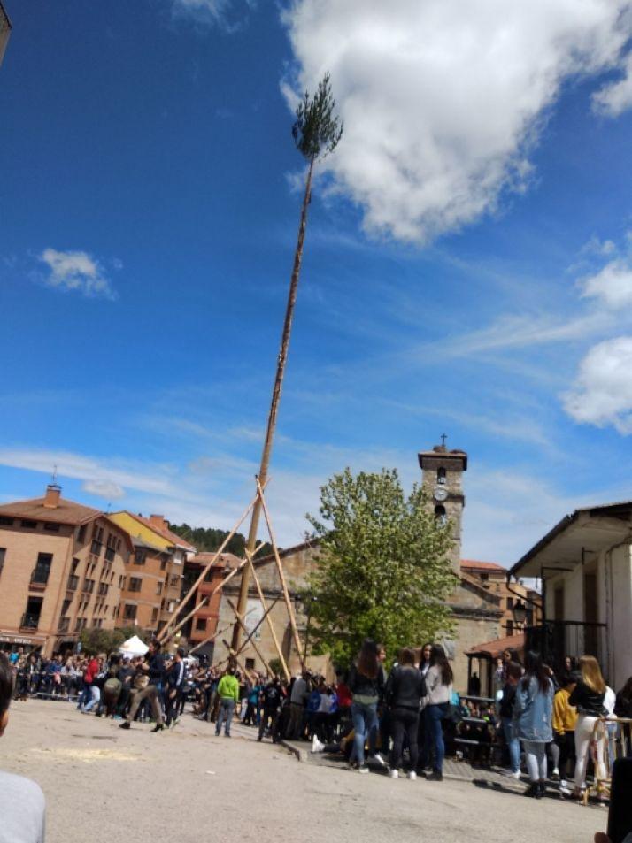 Foto 2 - Galería: la Pingada del Mayo en San Leonardo