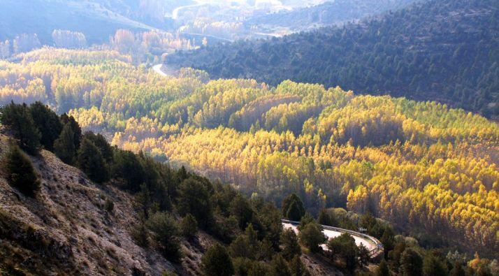 Imagen del Cañón del Lobos en la cuesta de La Galiana.