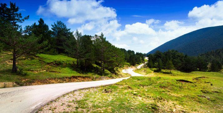 Diputación y Asfoso irán de la mano para revitalizar los montes sorianos