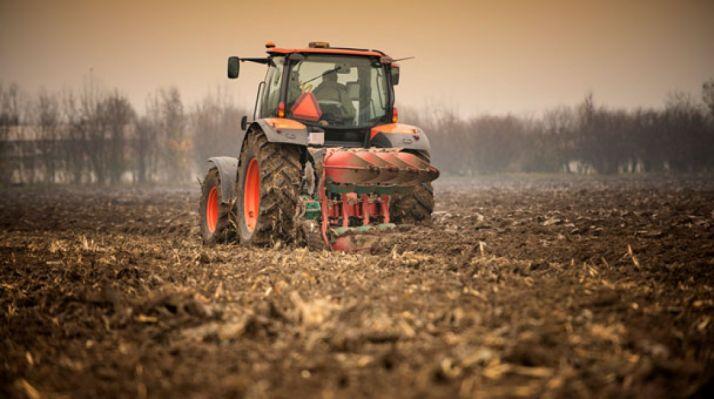 Foto 1 - La Junta refuerza su apoyo a los seguros agrarios con 8,1 M€