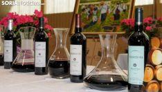 Vinos producidos y elaborados en Castillejo de Robledo. /SN