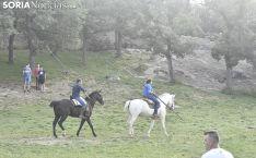 Entrada de los novillos de La Saca en los corrales de Cañada Honda. /SN