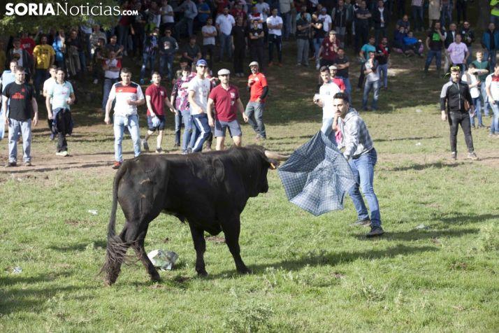Lavalenguas 2018 / María Ferrer