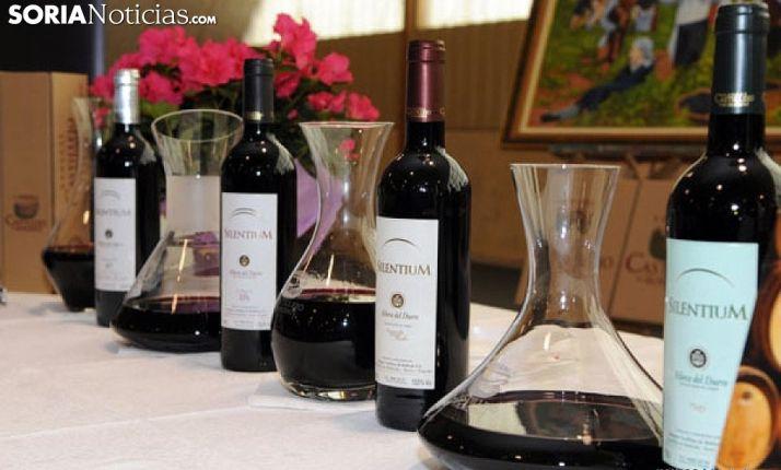 Foto 1 - Los vinos de C yL logran una cuota de mercado nacional del 26% y disparan sus exportaciones hasta superar 215 M€ sobre una facturación global de 1.000 M€