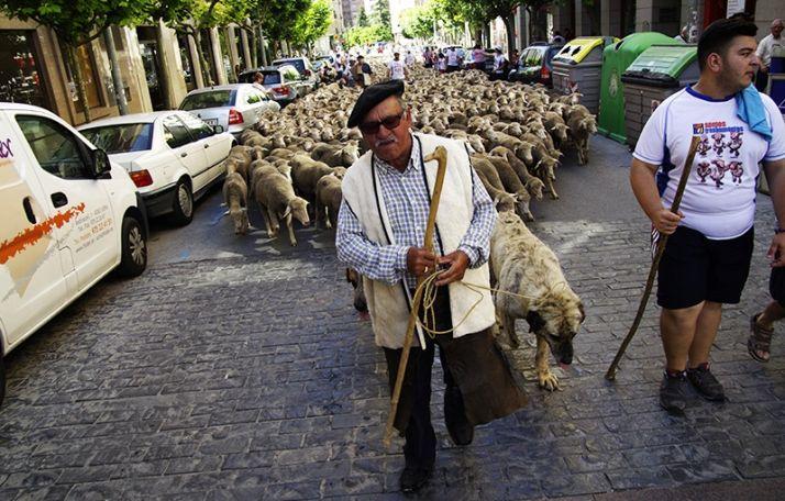 Foto 1 - Ponerse en la piel de un pastor trashumante