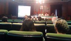 Imagen de la jornada en el salón de plenos del ayuntamiento adnamantino. /Dip.